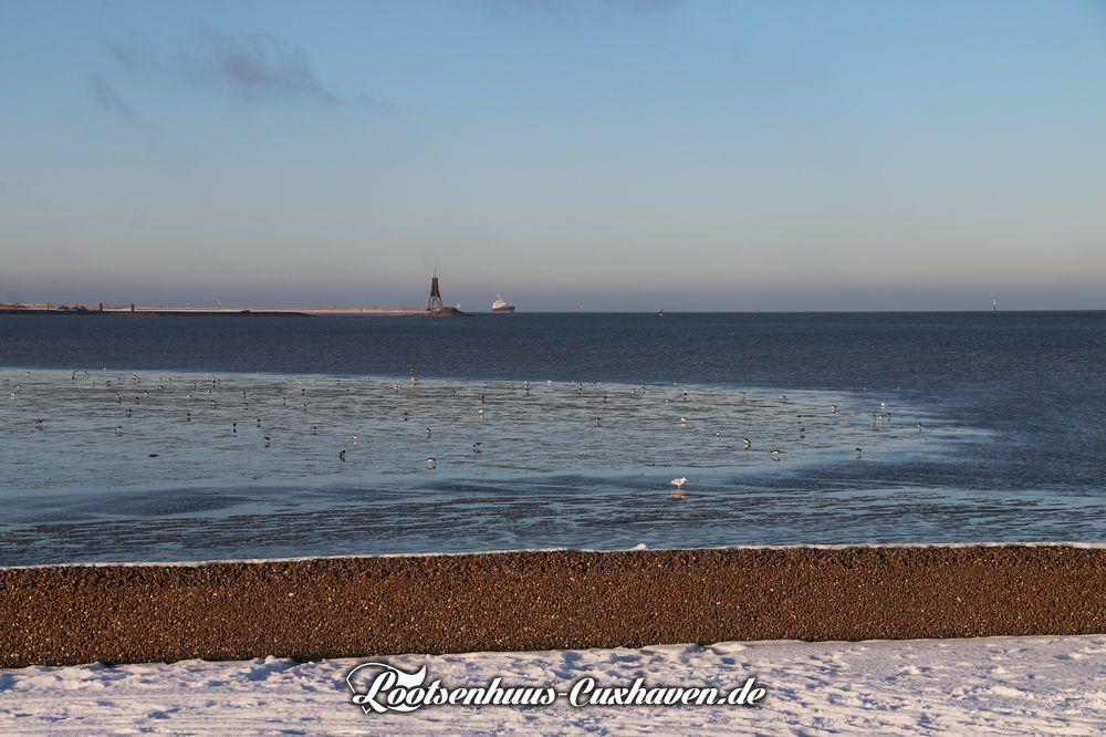 Cuxhaven Grimmershörnbucht, Schnee, Wasser, Vögel, blauer Himmel
