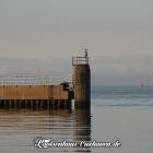 Steuerbord - Seglerhafen Cuxhaven