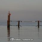 Backbord - Seglerhafen Cuxhaven
