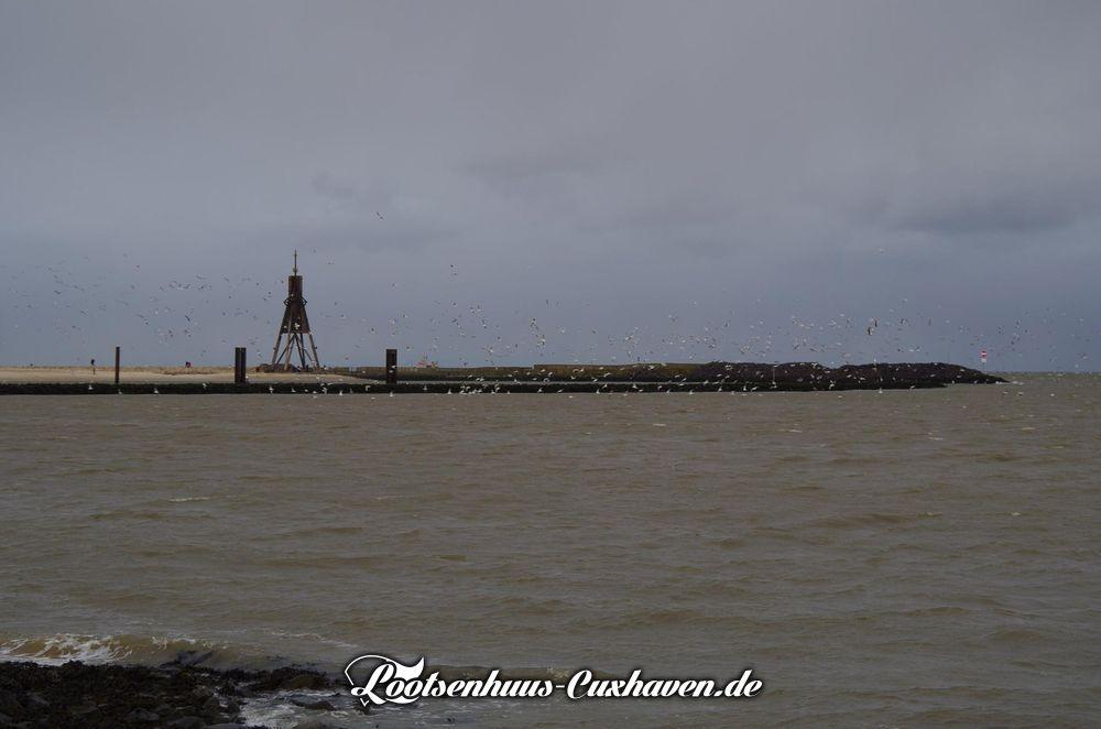 Cuxhaven Kugelbake und Möwen